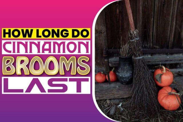 how long do cinnamon brooms last