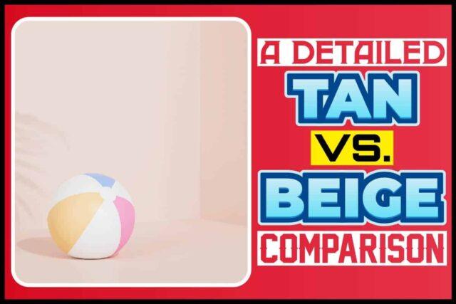 A Detailed Tan vs. Beige Comparison